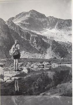 Snotbreen1947x