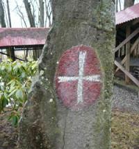 Vaerne,vaerne monastery,værne kloster,moss,rygge,Norway,norge