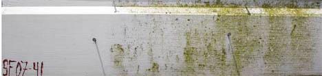 Svertesopp er et vanlig fenomen som lett øar seg vaske av med Jotuns husvask og vann. For å oppnå god motstand mot svertesopp etter vask, påføres sopp- og algedreper for å fjerne alle soppsporer.
