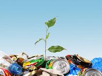 I denne testen kan du sjekke hvor miljøbevisst du er.
