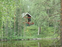 sauna,finland,summer, cottage,forest,wildlife