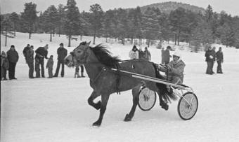 Travkjøring 1978