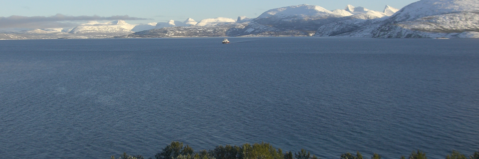 fjordogbaat