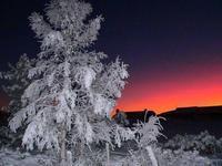Kvamsfjellet,Gudbrandsdalen,Norway,Kvam Mountain