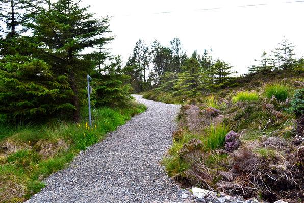 Inngang til Nordsjøløypa frå høgda til Træsneset