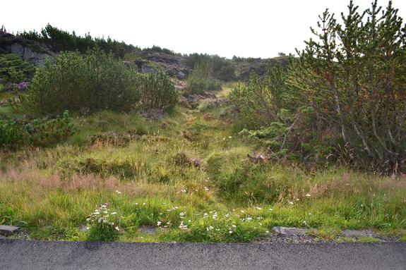 Inngang til løypa på austsida på vegen mot Stormark