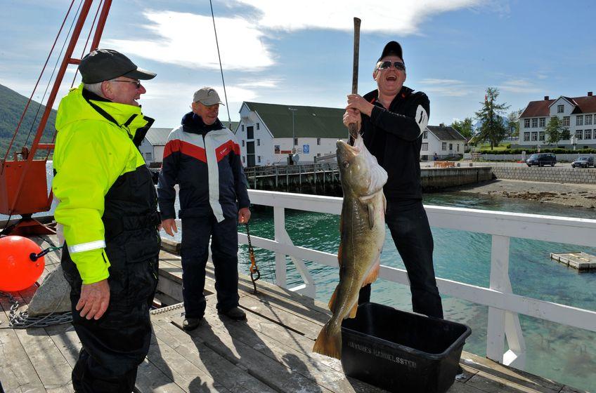 Fin fangst