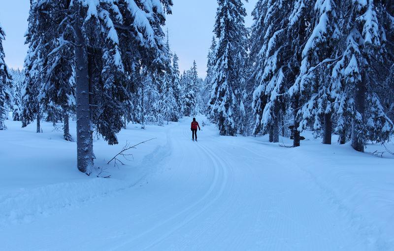 Dame på skitur.