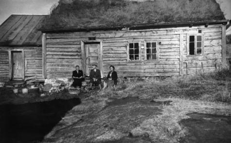 Solveggen - hus med torvtak