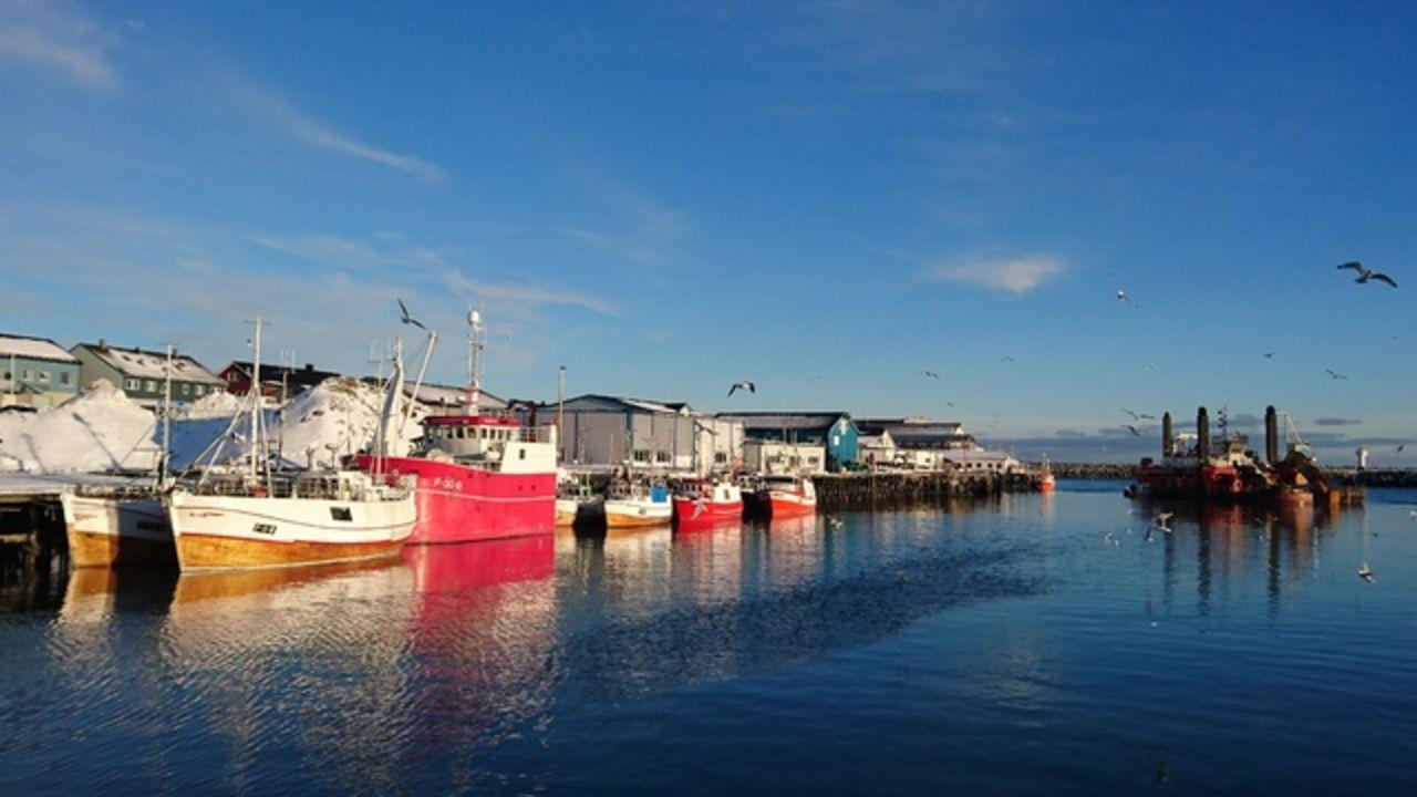 Berlevåg Havn