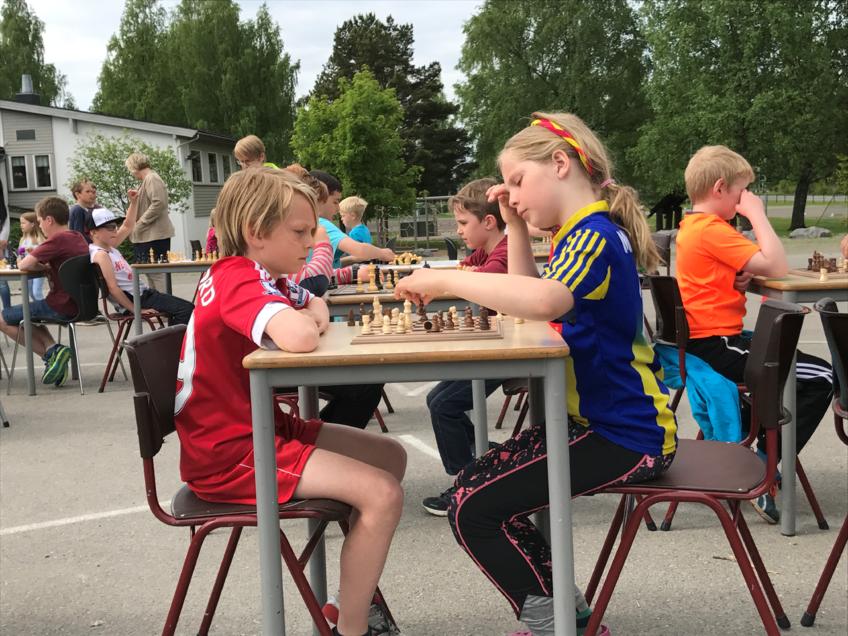 Konsentrerte sjakkspillere