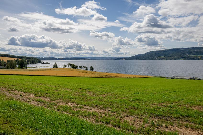 Utsikt mot Mjøsa fra jordet nedenfor Ringsaker kirke