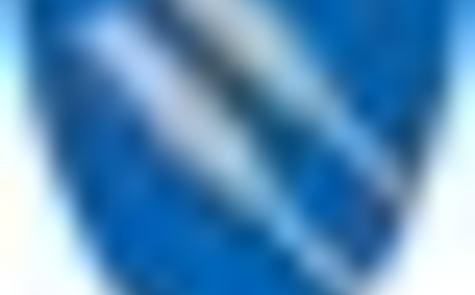 Fedje sitt kommunevåpen synar to skråstilte årar i sølv mot ein blå bakgrunn. Det er laga av teiknar Even Jarl Skoglund og godkjend i statsråd 13. juni 1990.