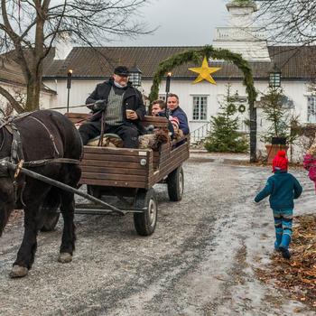 Hest og vogn på gården.
