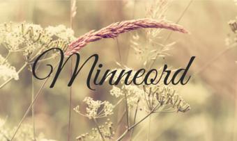 Minneord3