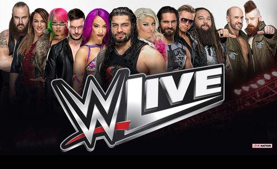 WWE_websak-lavopplost