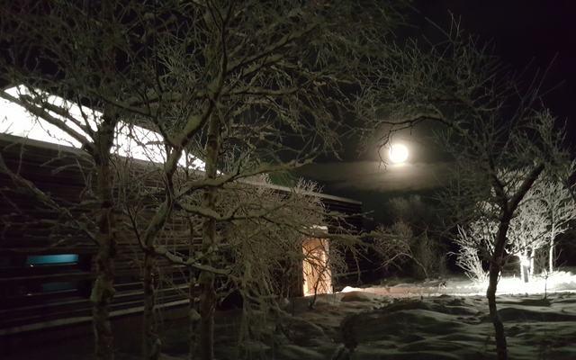Vintermuseumsbygg