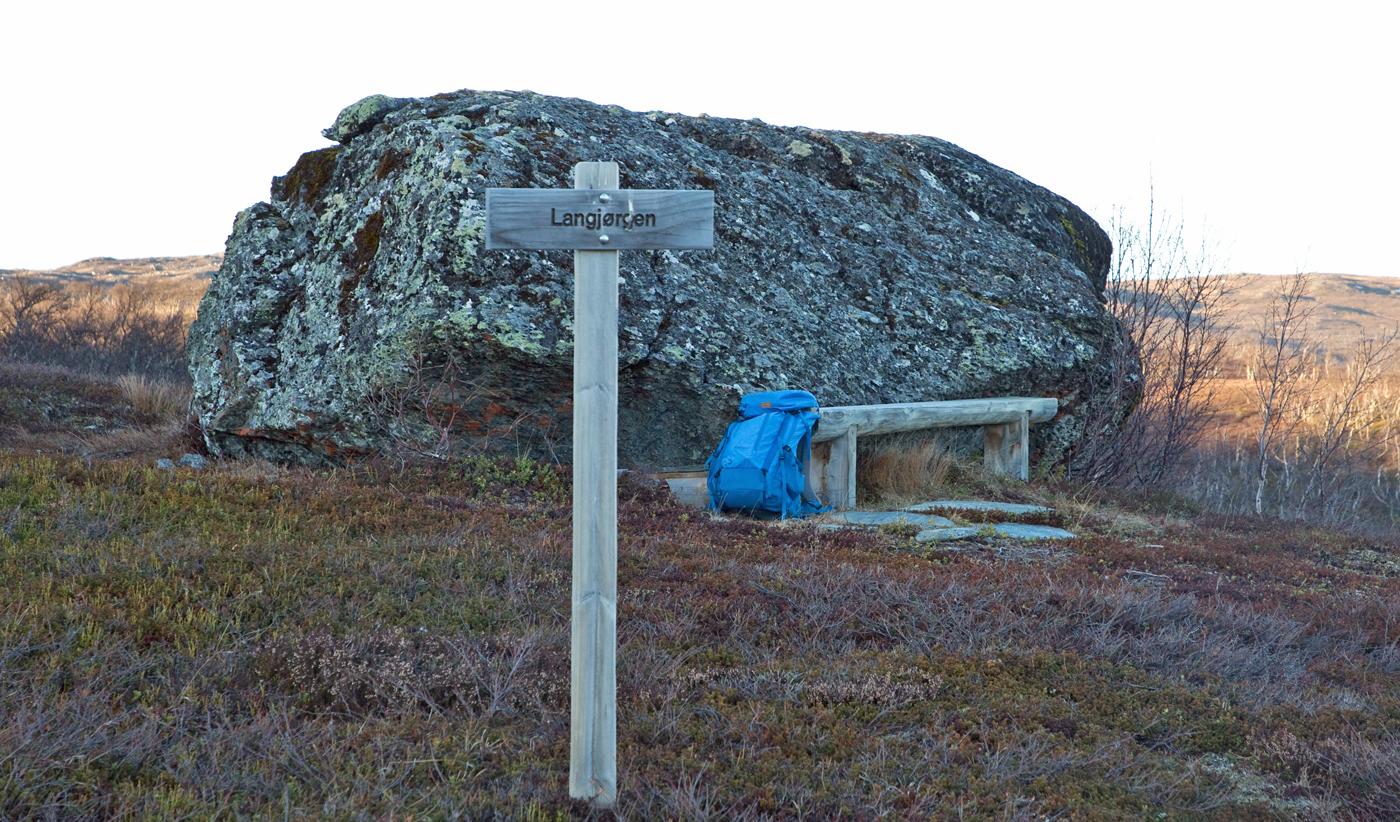 201113j-stein.jpg