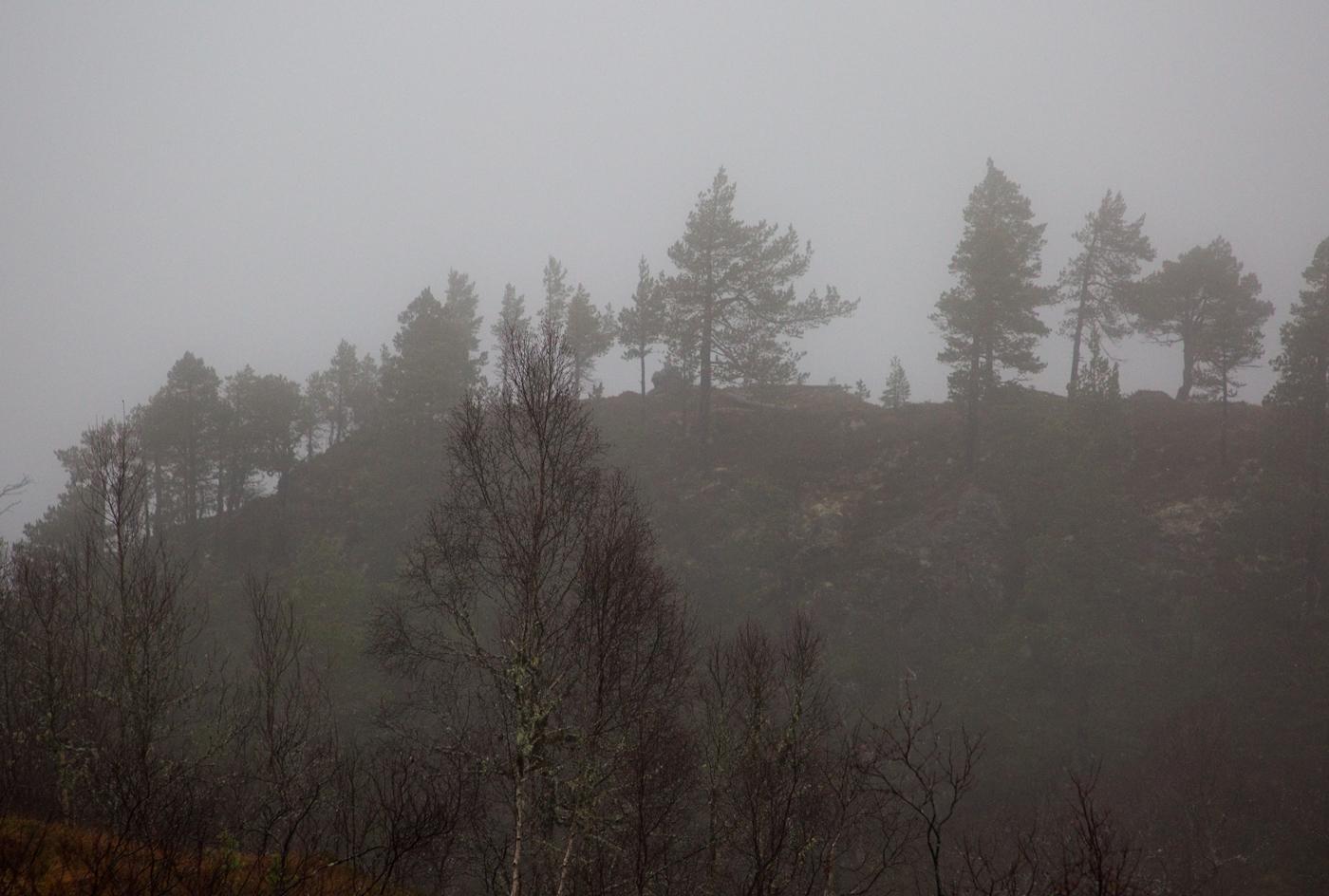 201118k-Svarthaugen.jpg