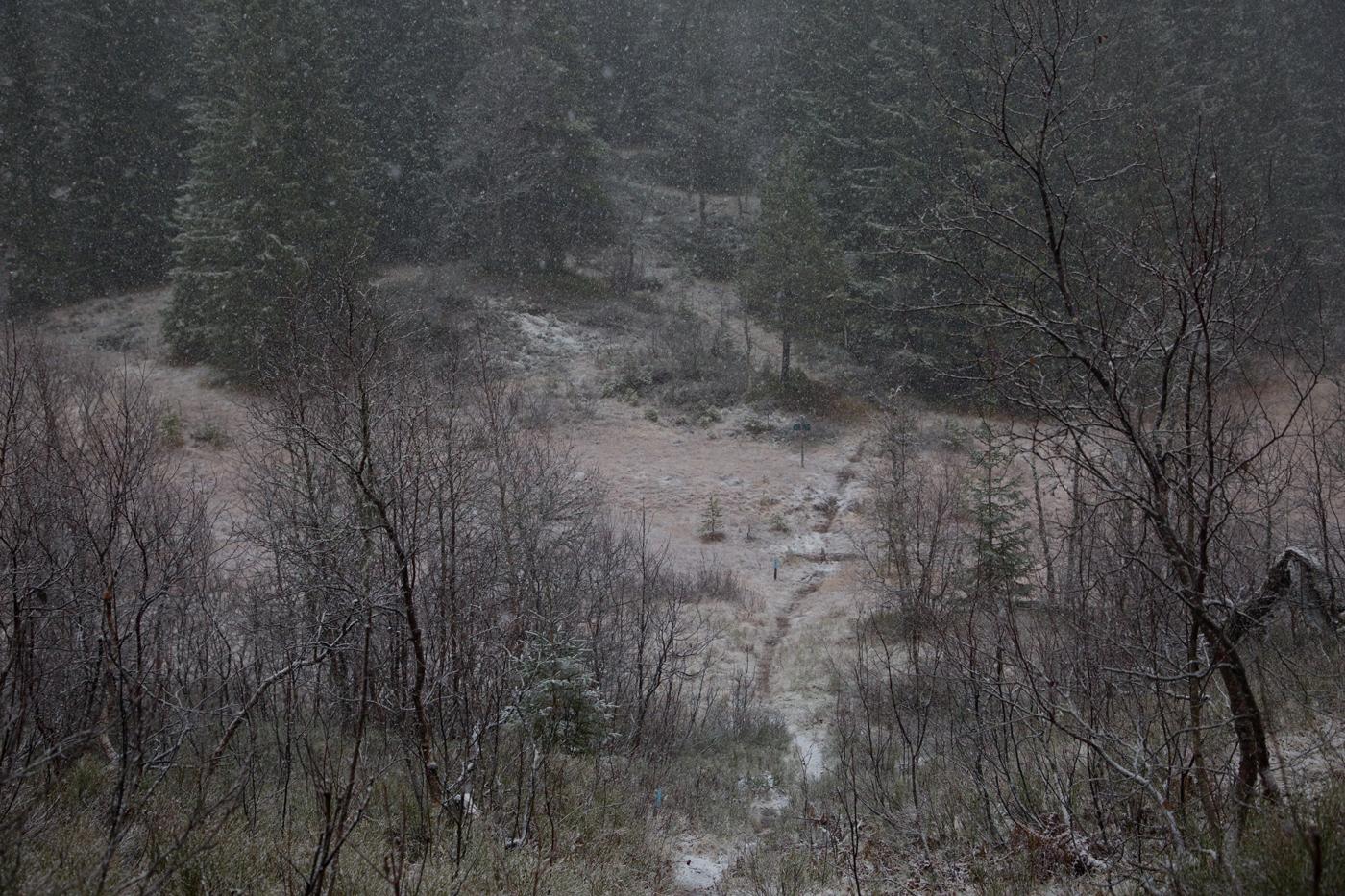 201118o-snø.jpg