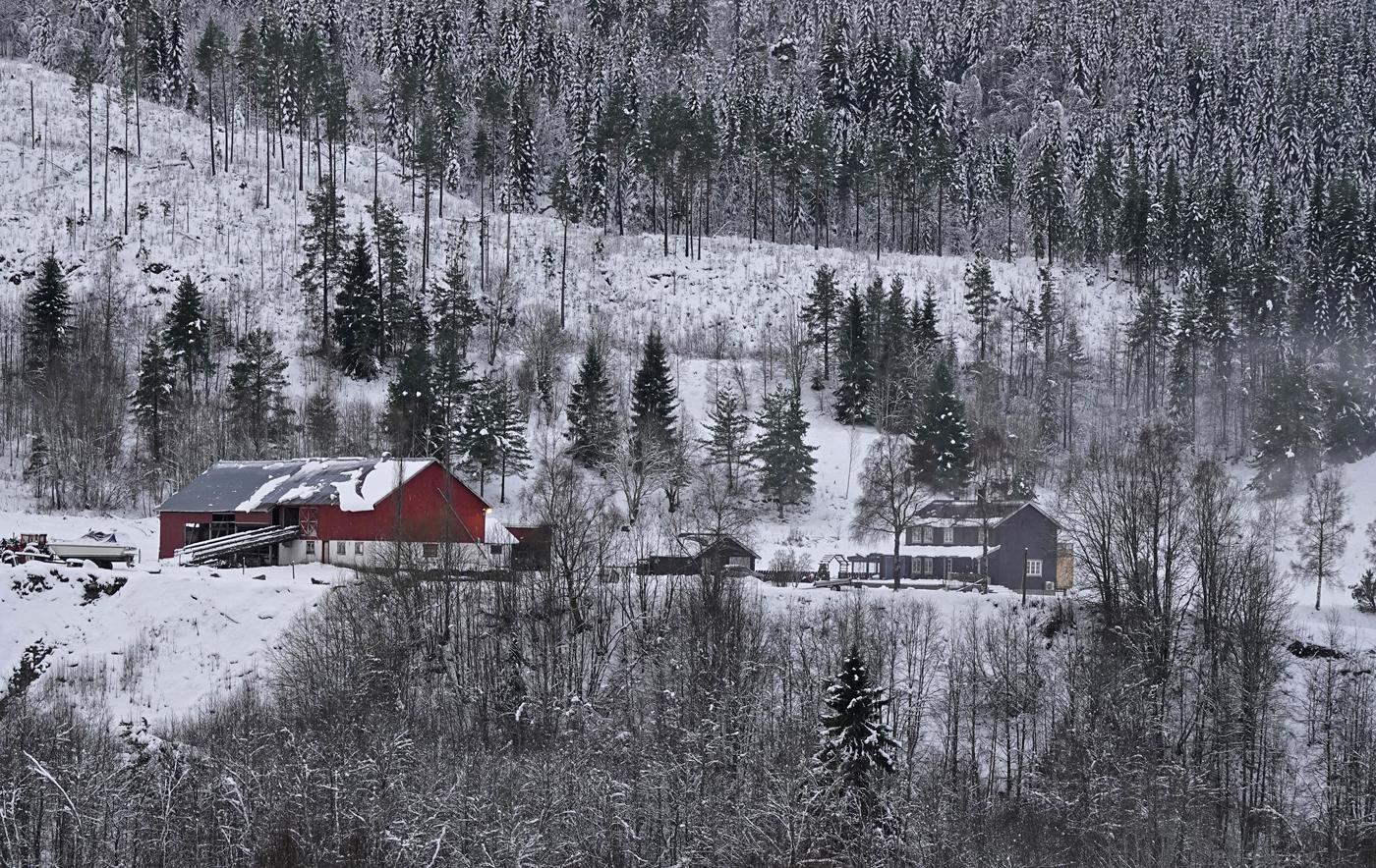 201121f-Sjellen.jpg