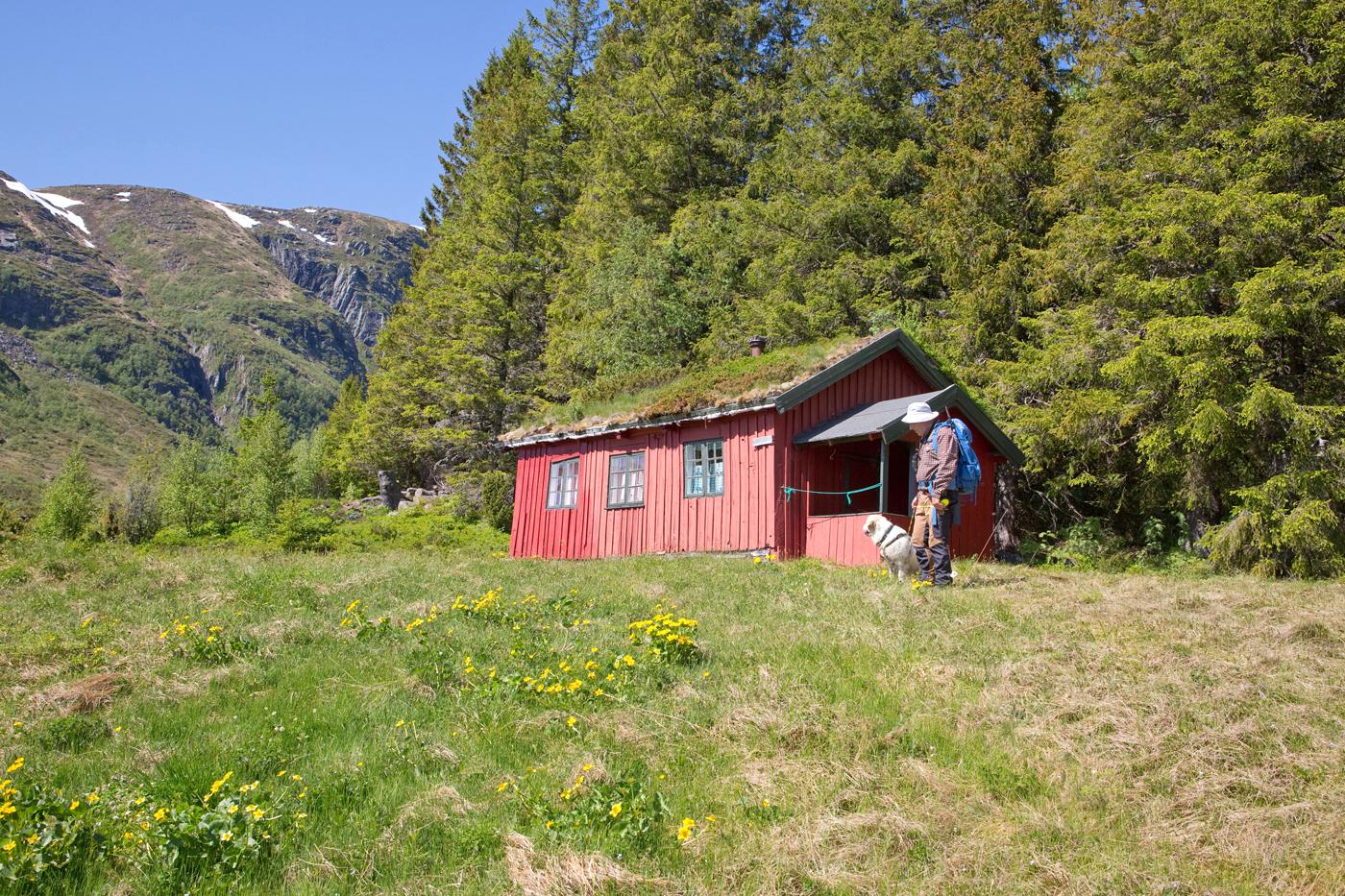 210604d-hytte.jpg