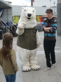 polar bear,rovaniemi,lapland,finland,santa claus,safaris