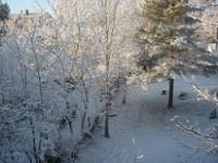Christmas,Oslo,Norway,Hosle,Barum,Bærum,snow,Akershus