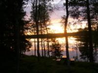 Finland,Soumi, forest,wilderness,Oulu,Rovaniemi