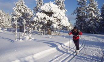 Ski Grønlifeltet 008_300x225