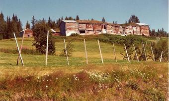 Øygarn