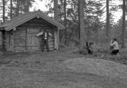 Bøfjordelever-8
