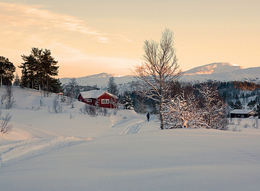 Østre Nordmarka_Surnadal[1]_550x403