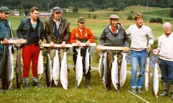Edgar 1981 2 80 kilo laks stort døgn0001