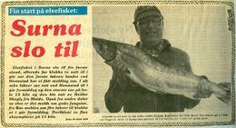 Edgar 1983 1 Janne TK Surna slo til0001_1024x557