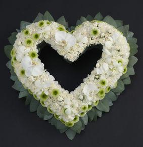 9_sorg_cymbidium_chrysantemum_hjerte