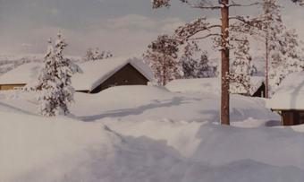 Februar 1968