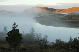 Jakthelg på Krokstadfjellet  2011  019