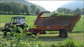 Landbruk 001 Ven.jpeg