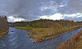 Rindalskogen(2)10102012_HDR