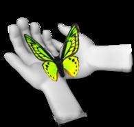 Sommerfugl i hånd