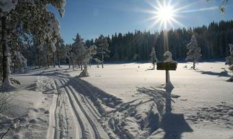 2 Ved Lomtjønna - 4 km