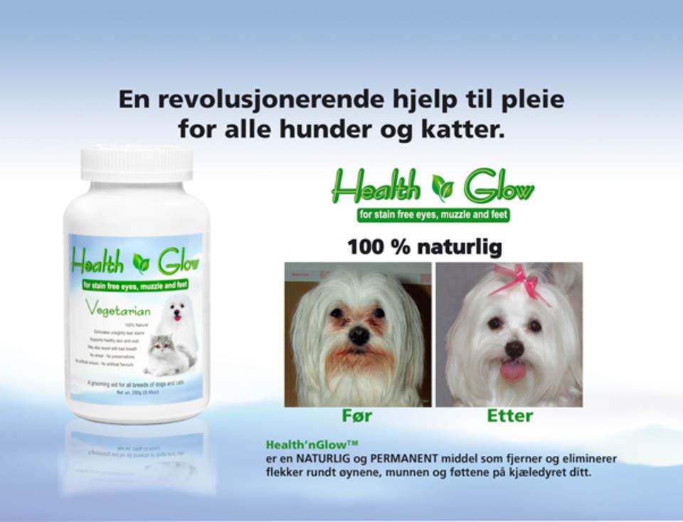 WEBplakat-HealthnGlow602