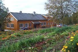 Stjernehagen