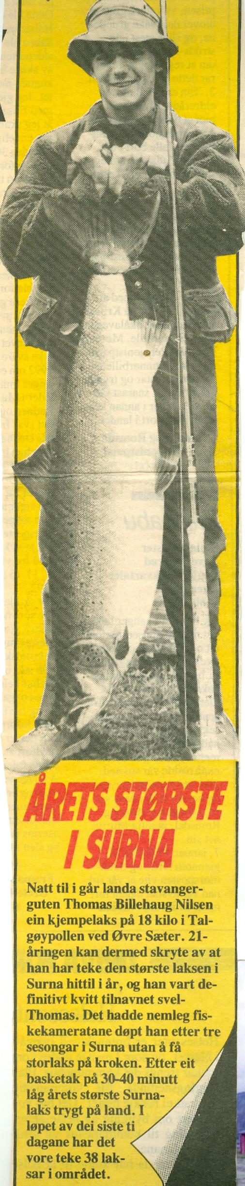 1992 rep bilder C smal0001.jpg