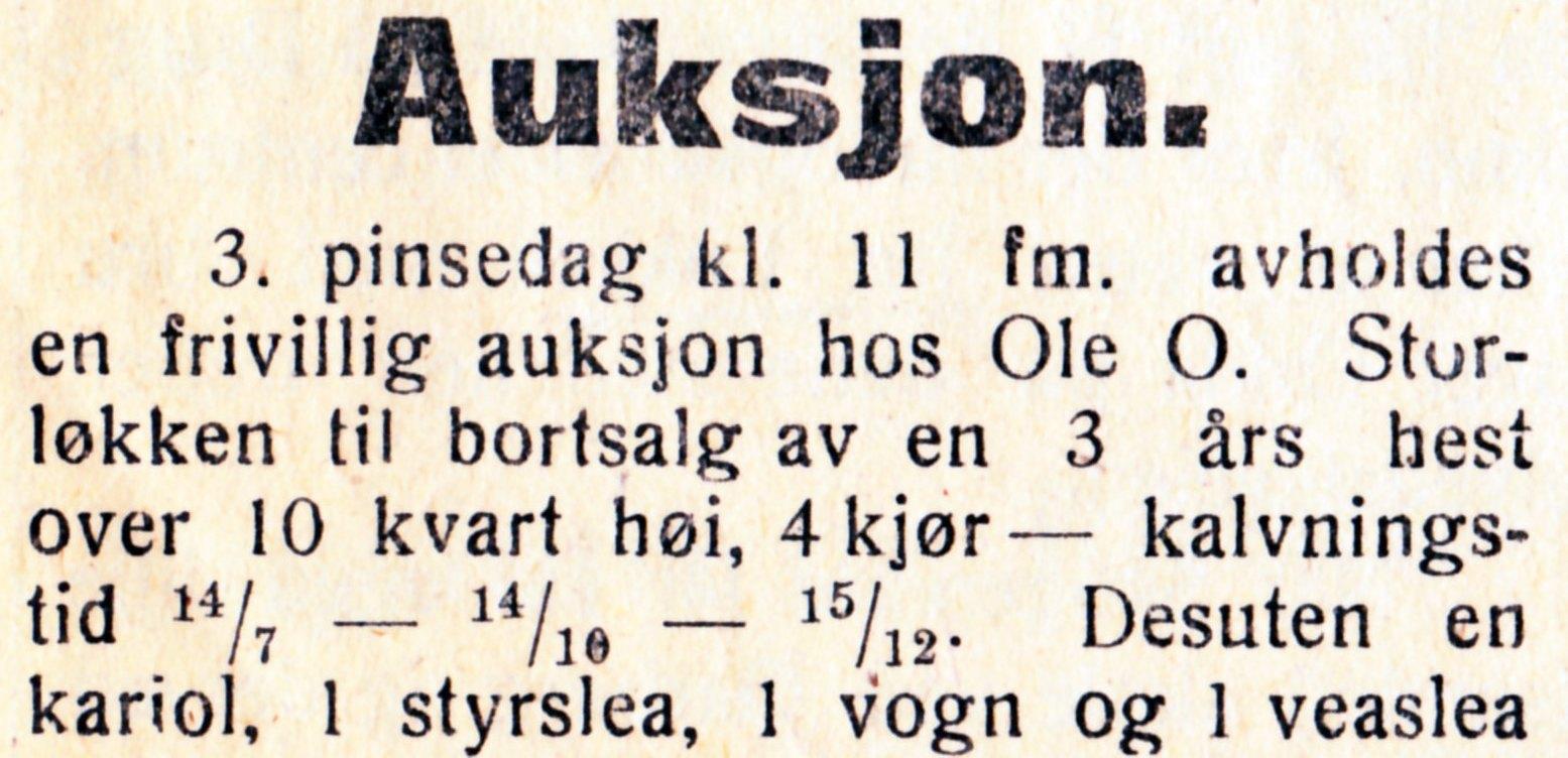 Auksjon Storløkken.jpg