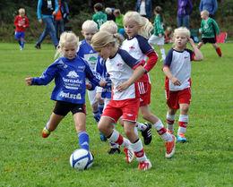 søyacup10