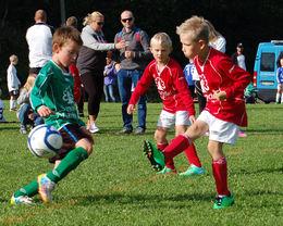 søyacup20