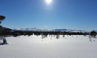 UtsiktmotTrollheimenfråSkihytta
