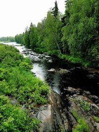 Koiteli,Finland,Koitelinkoski,nature